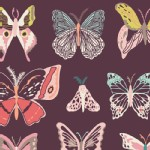 Art Gallery Fabrics - Winged - Wingspan in Fig